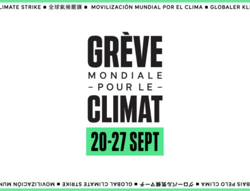 Friday for future 2020! – CORTESIA Sécurite Privée solidaire de la lutte contre le réchauffement climatique